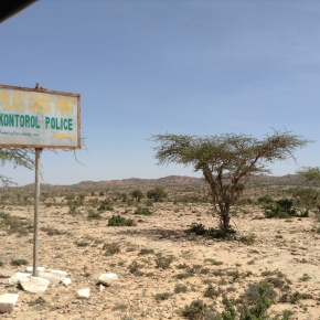 The bleak future of elections in Sub-SaharanAfrica